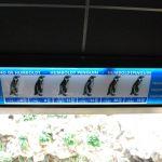 loropark_pingvinarium_06