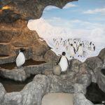 pingvinarium_03